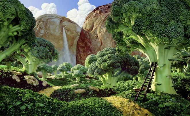 Immagine di un bosco di verdure
