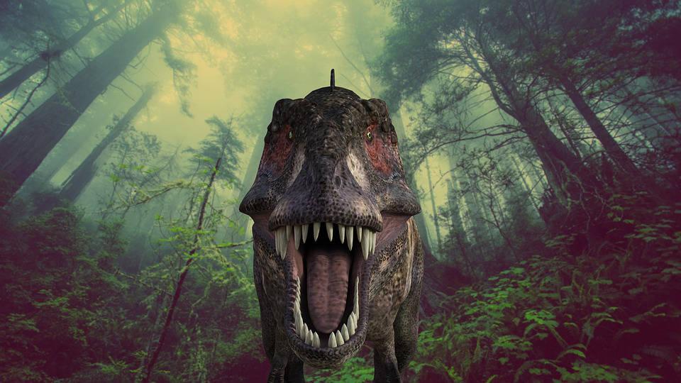 Immagine di tirannosauro