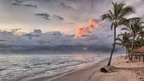 Una spiaggia sabbiosa su un'isola